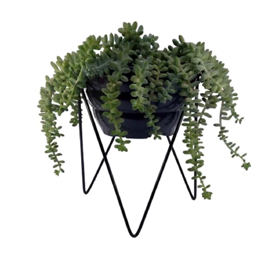 vasos-para-jardim-vertical.