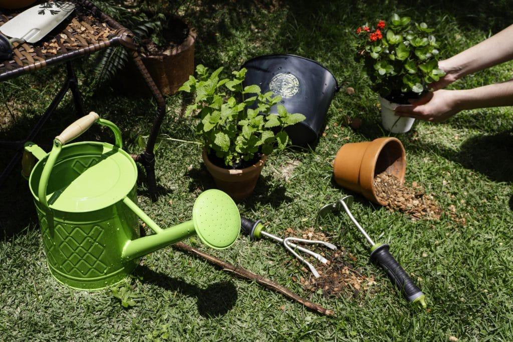 jardim-na-primavera-2-