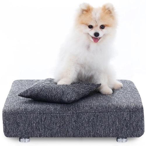 cachorro-em-cima-da-caminha-para-cachorro